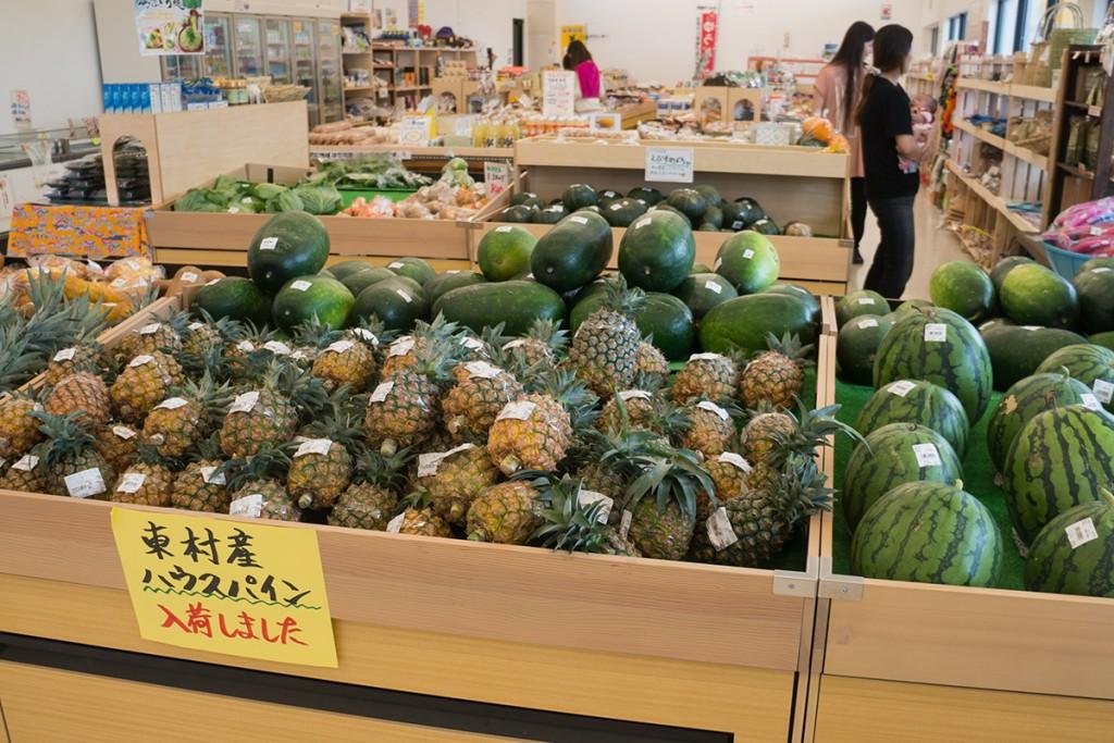 pine_hanejinoeki