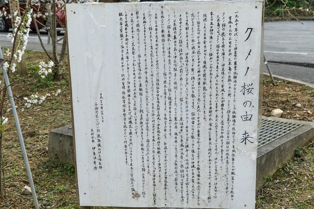 kumenosakura13yurai_izumi160314