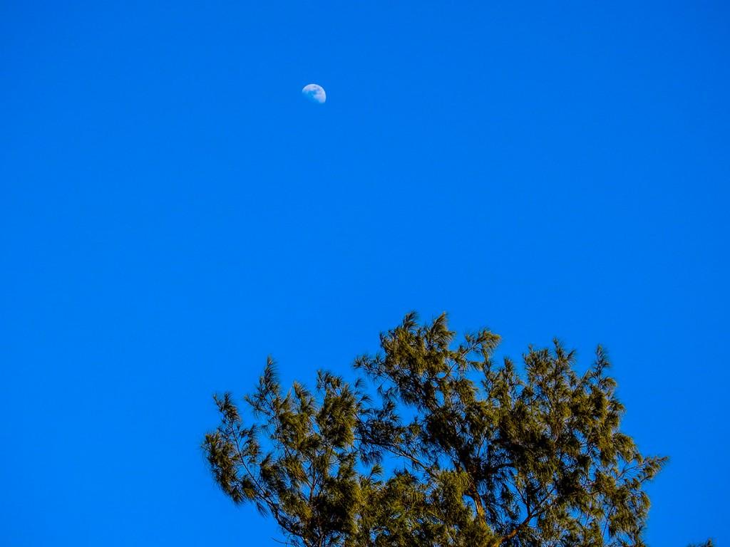 moon_nagumagai