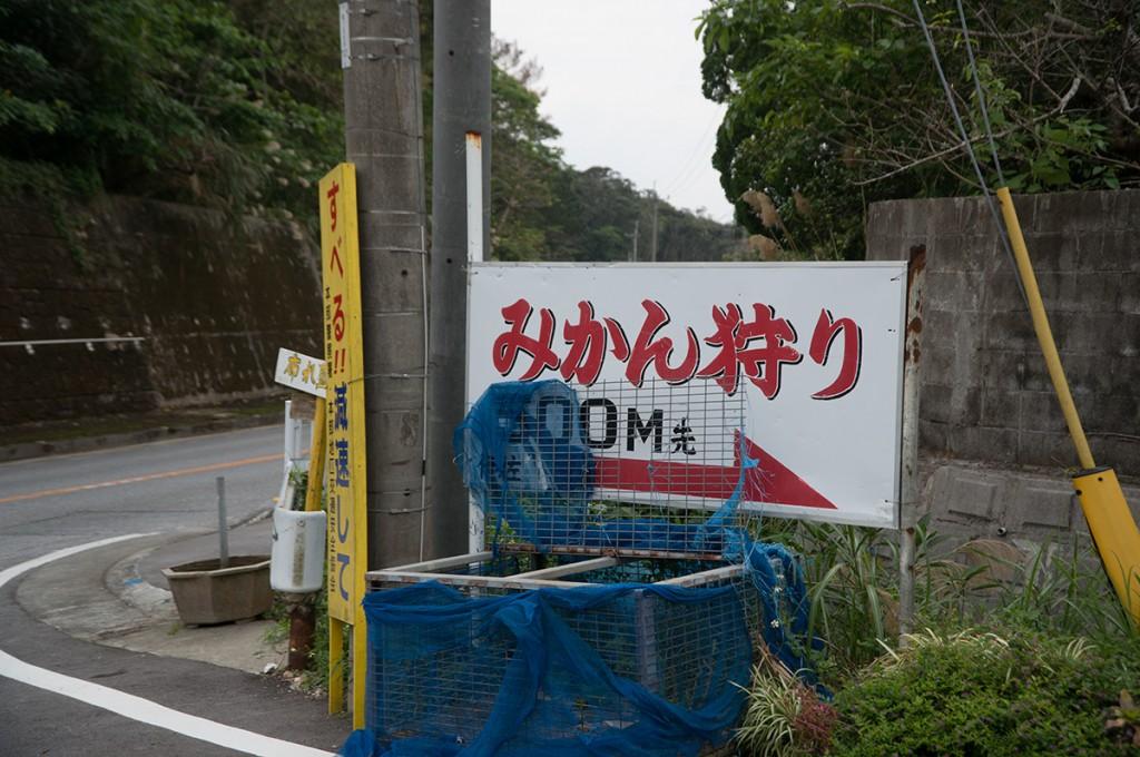 mikan4_nakayukui141225