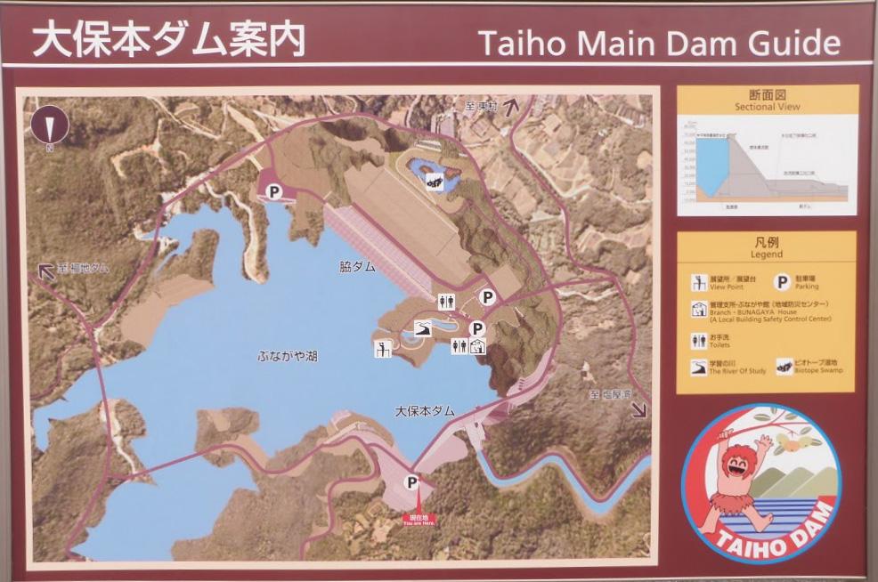 info_taihodam
