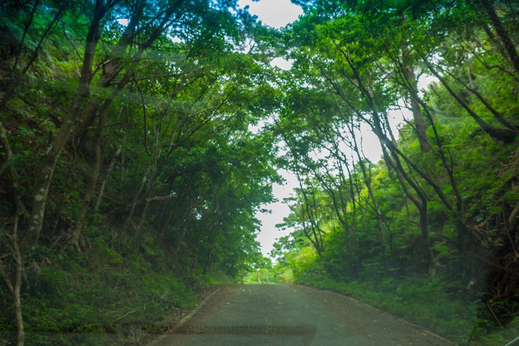 road2_sokobaru