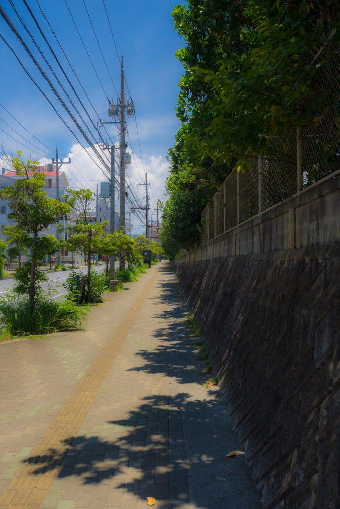 tree_shadow_center_160729