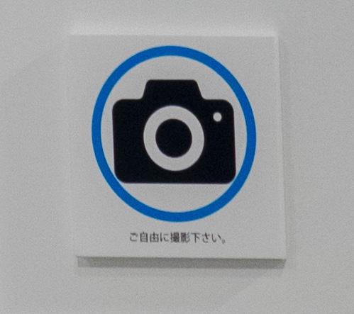 camera_ok_sapeur