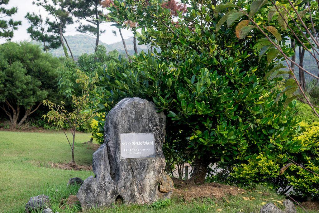 summit_tree_yaedake160819
