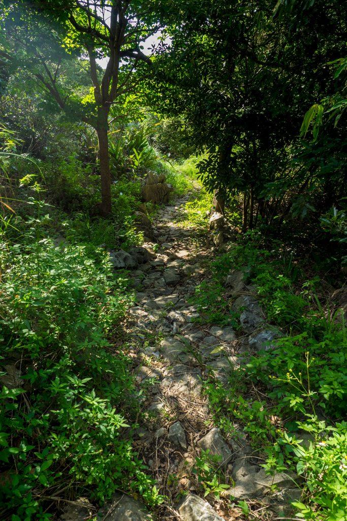 uragushiku_road2_160920