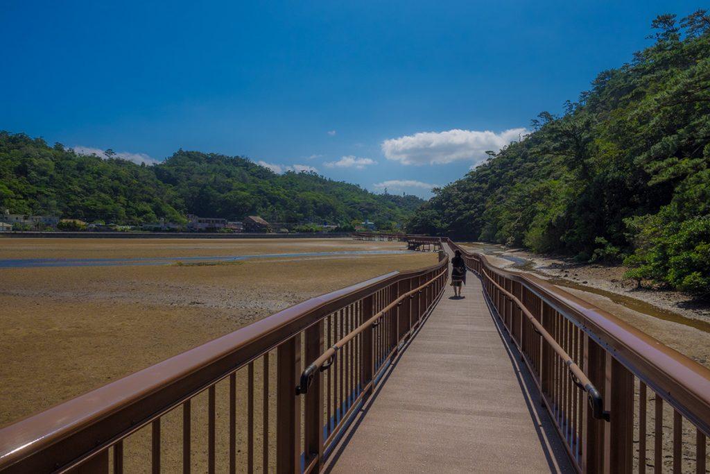 mangroveroad07_ohura