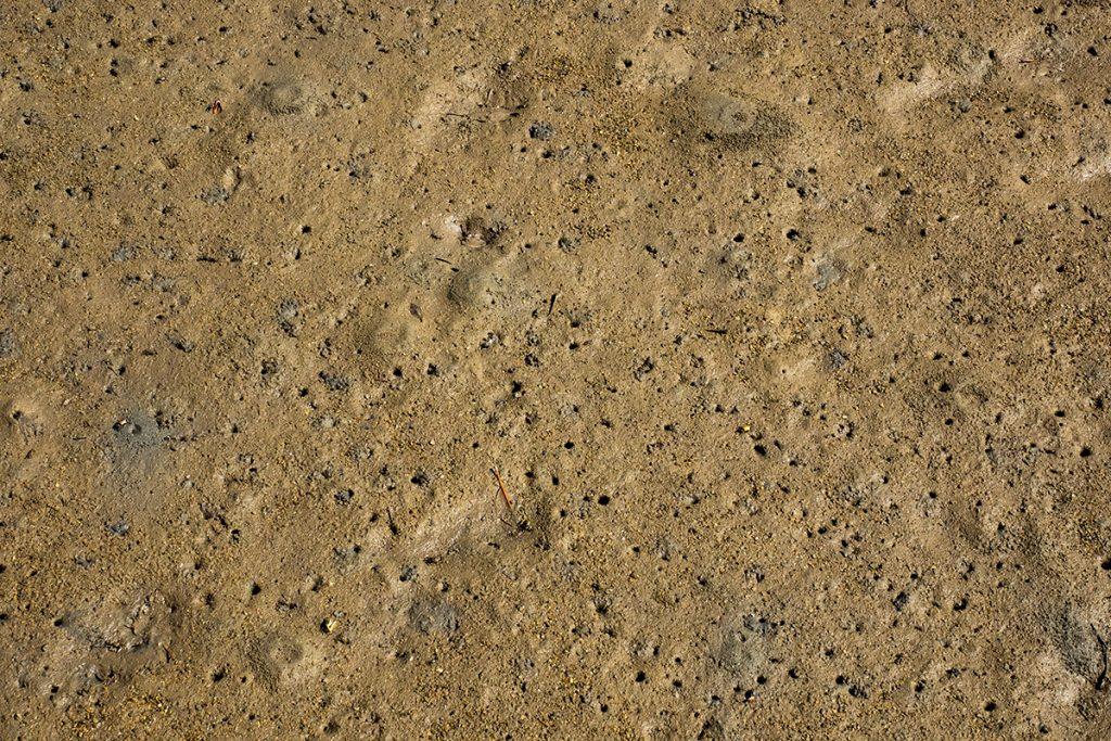 river_mud2_ohura