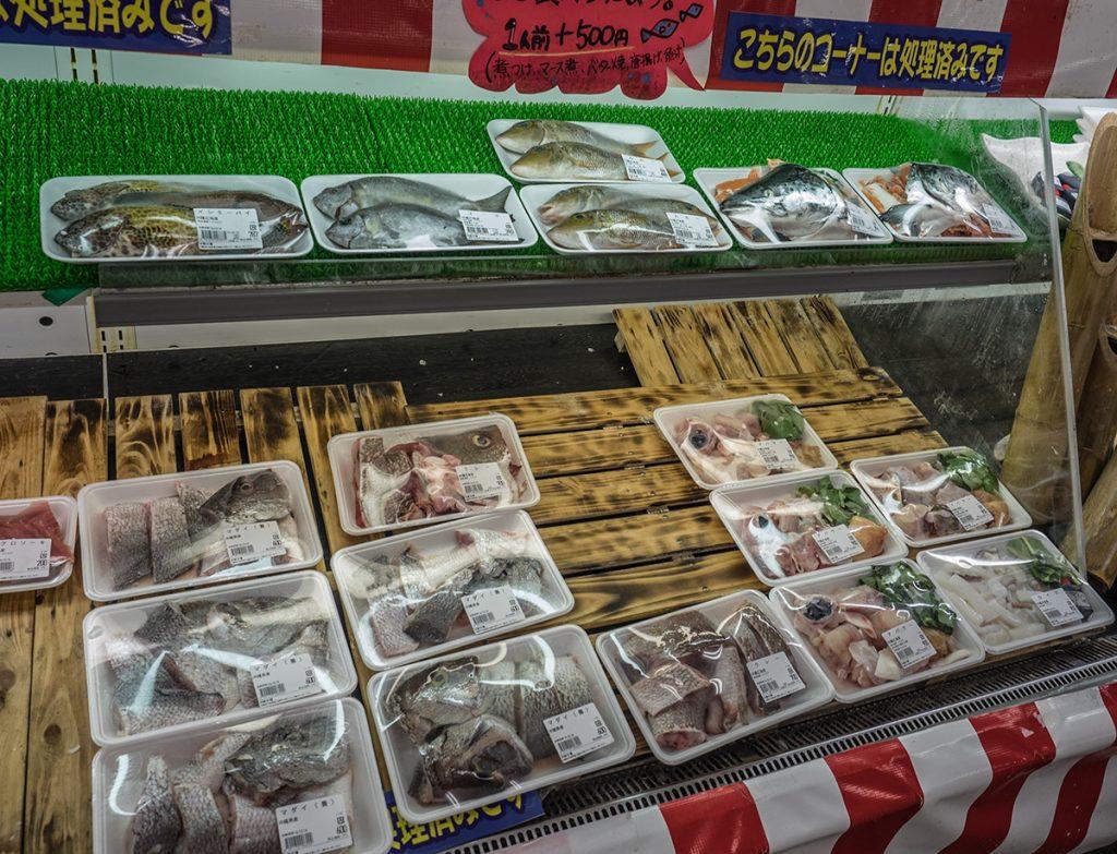 fish4_kaisenichiba
