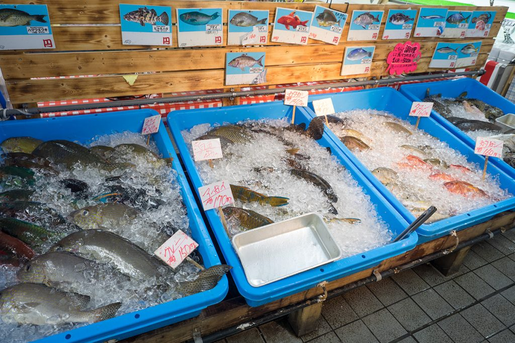 fish_kaisenichiba