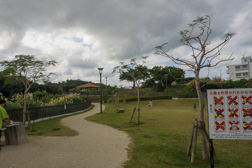 avenue_hiyaragawap
