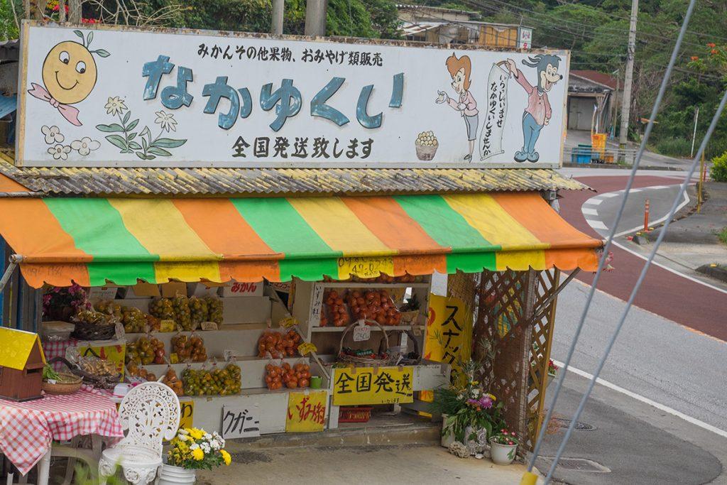 nakayukui_motobu170110