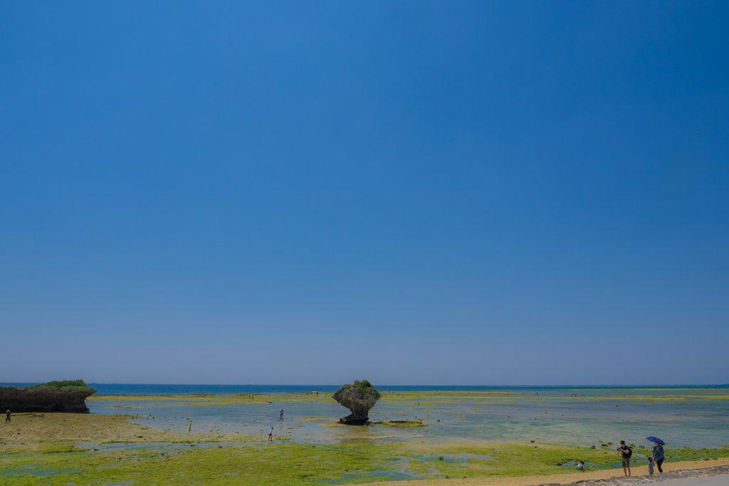 sea_toguchi170429